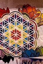 logo petite fleur de vie_1.jpg