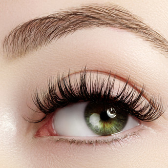 Eyebrow + Lashes