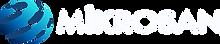 80 logo beyaz.png