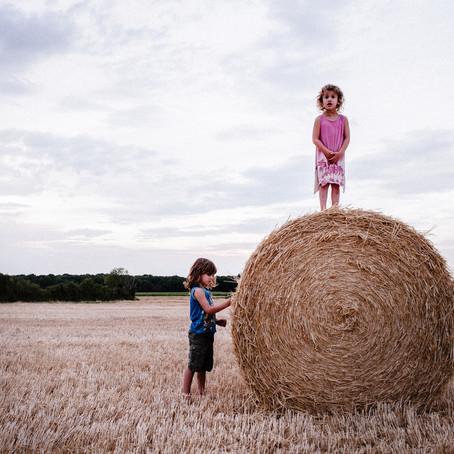 Perso - L'été dans les blés