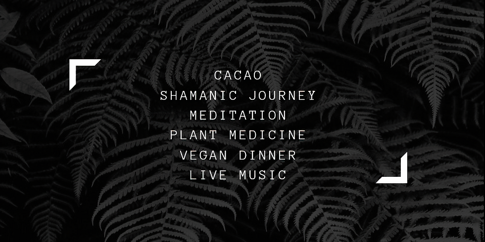 Plant + Music at Soul Sierra