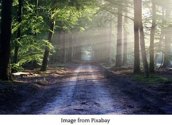 Imagining Pathways