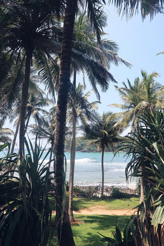 Hiriketiya through the palms
