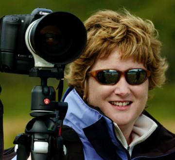 Sue Morris - Visions of Nature