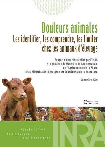 Douleurs animales rapport INRA 2009