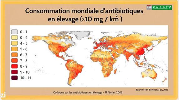 Consommation mondiale antibiotiques en élevage
