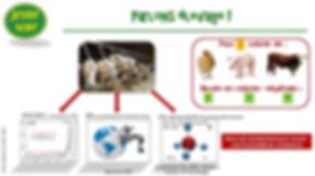 Jeudi Vert : impacts de l'élevage, gaz à effets de serre, eau, méthane