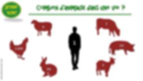 Combien d'animaux mange-t-on dans une vie