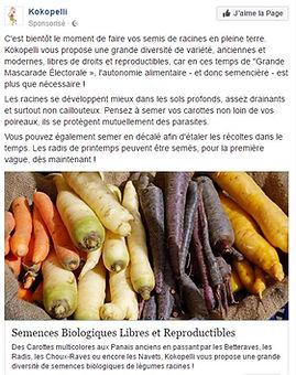 Graines Semences  libres et reproductibles Kokopelli