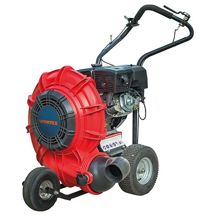 WORTEX SFM D4T Soffiatore a benzina