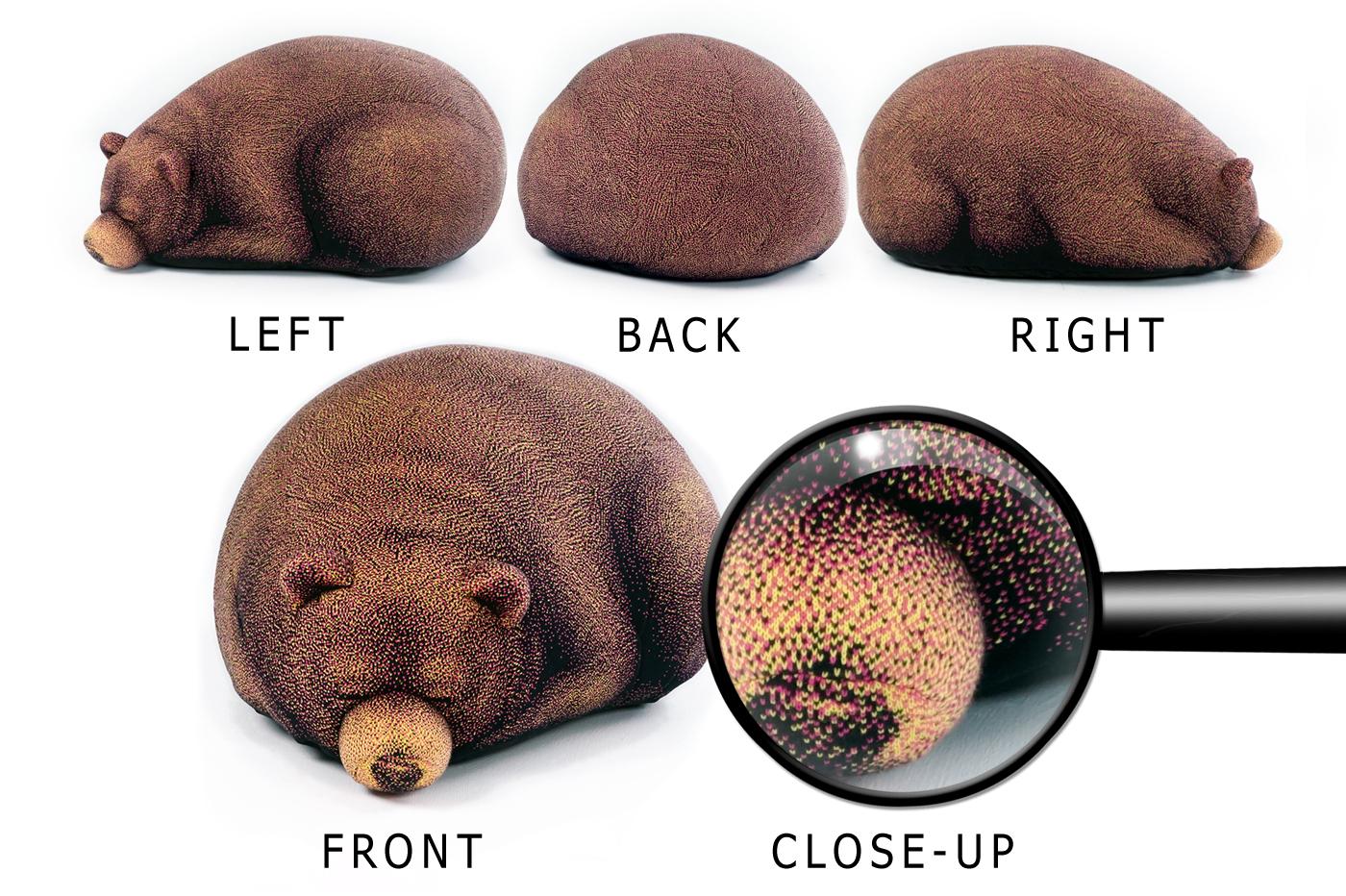 cub close up.jpg