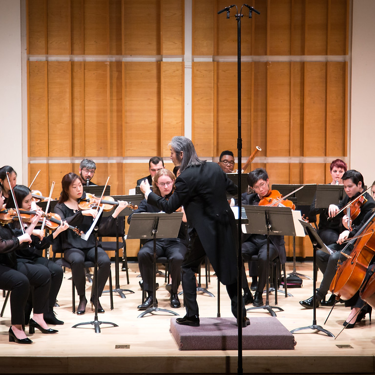 6th Camerata Artists International Competition