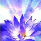Purple Meditation Greeting Card