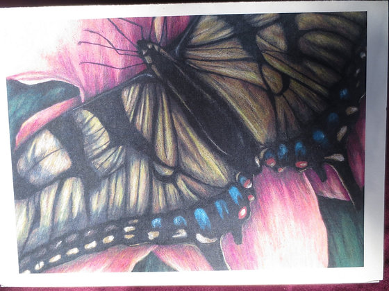 Wings: BLANK GREETING AA