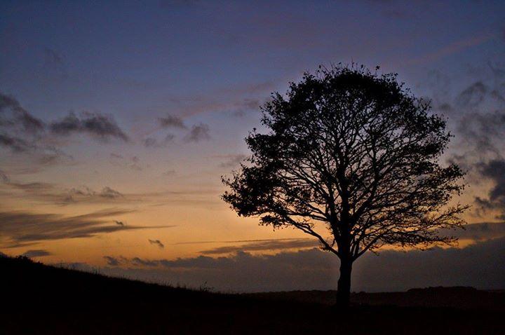 Last light at Cissbury Ring