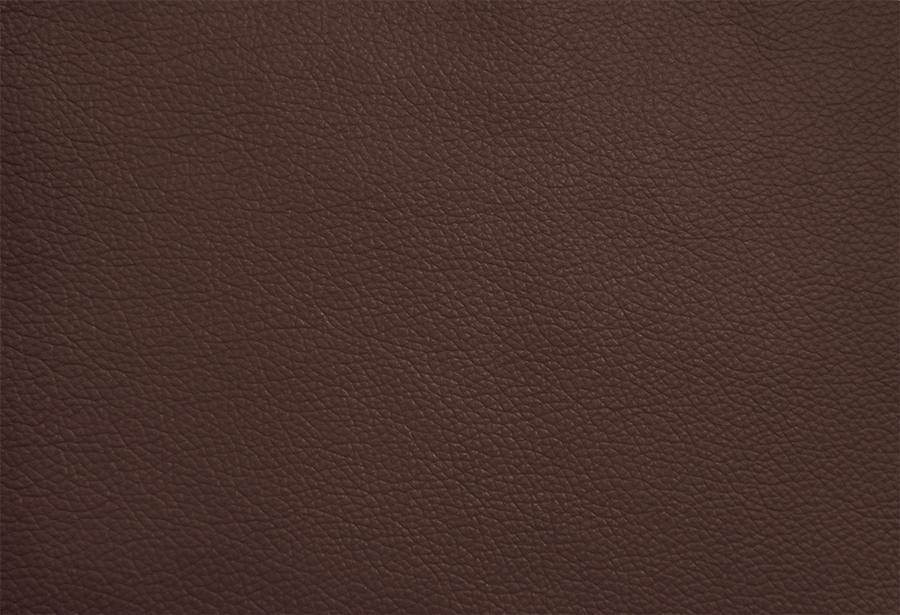 SD 06 Caramelo - clique e amplie