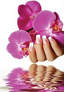 sophea's nail salon