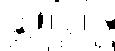 CFF Logo (White).png