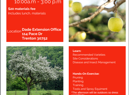 Come to Fruit Tree Field Day at Dade Extension Office!