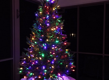 The Christmasy Conifer