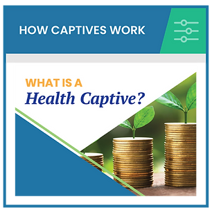 AHRIC_How_captives_work-01.png