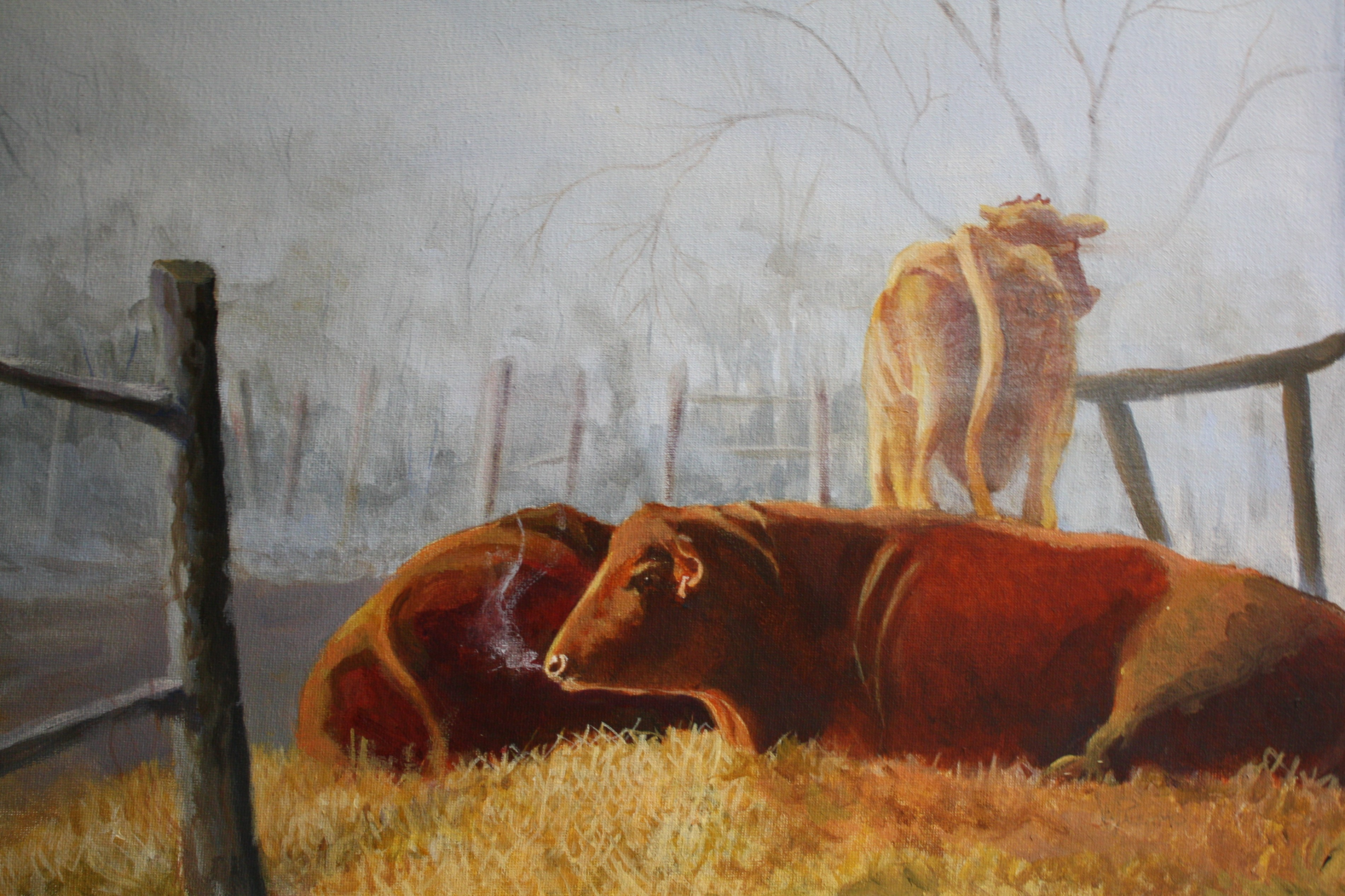 "Early Morning & Cows, 20x16"" Sold"