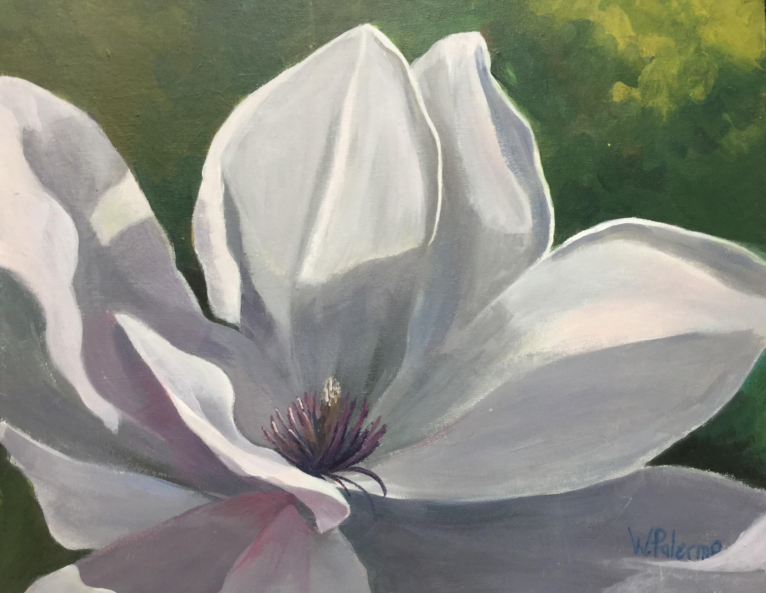"Sweet Magnolia, 20x16"""