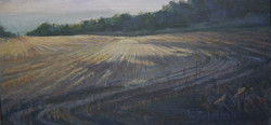 """Nature's Converging Lines, 20x10"""""""