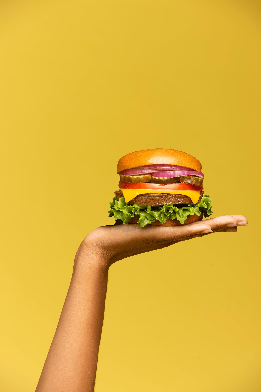 vegan-burger-hendo-studios-compressor