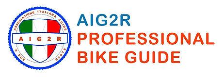 AIG2R.jpg