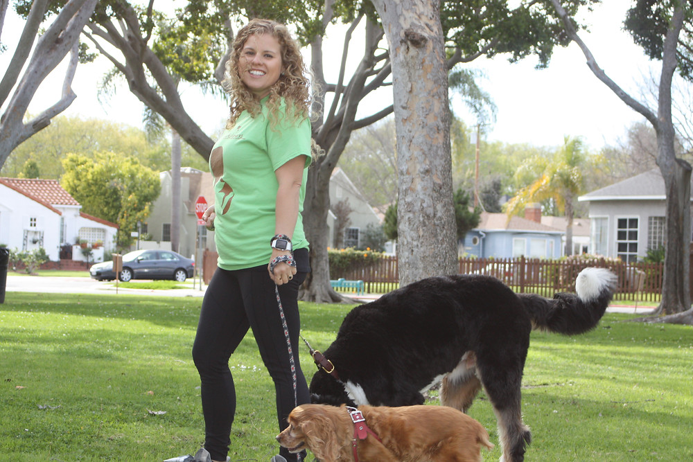 dog walker in Century City