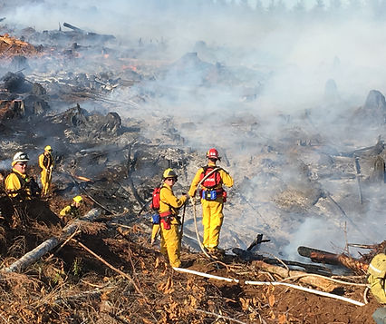 Wildland cover fire clean up