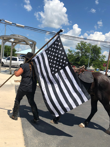 BLM flag Horse.jpg