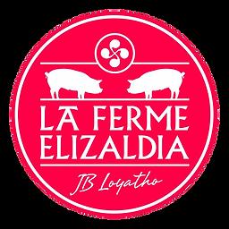 logo_elizaldia.png