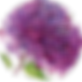 caraegiving logo3sm.png