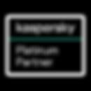 kaspersky-large.png