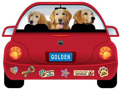 Golden (CR6)