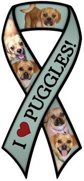Puggle (RM382)