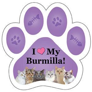 Burmilla (PM303)