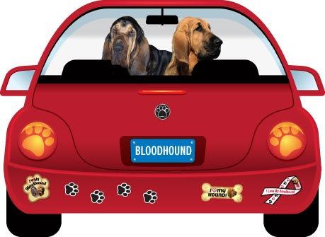 Bloodhound (CR107)
