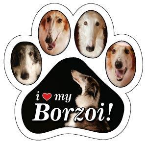 Borzoi (PM135)
