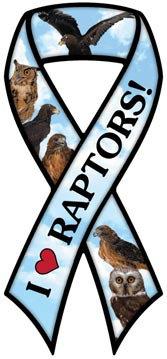 Raptors (RM513)