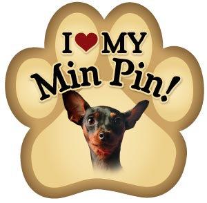 Miniature Pincher (PM136)