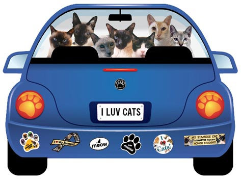 I Luv Cats