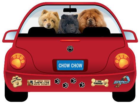 Chow Chow (CR110)