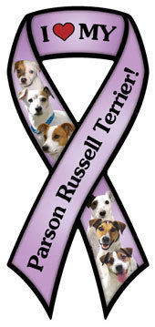 Parson Russell Terrier (RM627)