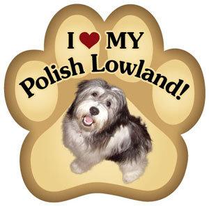 Powlish Lowland Sheepdog (PM339)