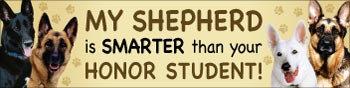German Shepherd Honor Student (BU92)