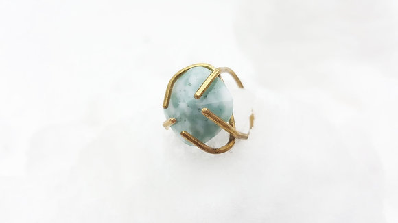 the light turquoise claw