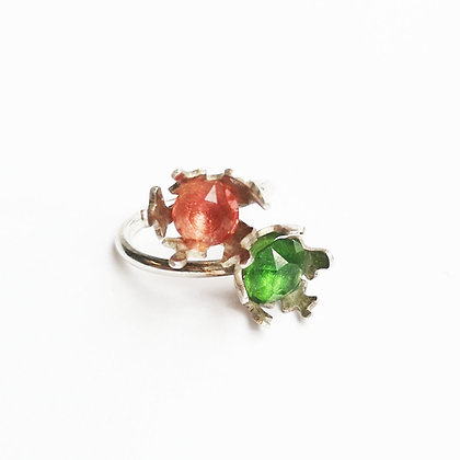 Two Corals on a ring